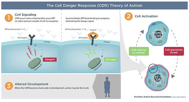 Cutting-Edge Science that can heal your child with Autism