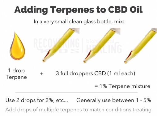 Adding Terpenes to CBD Oil - Recovering Kids Blog
