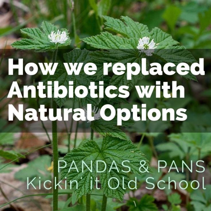 Replacing Antibiotics with Natural Options